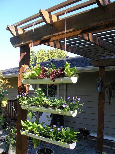 DIY Vertical Gutter Garden