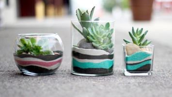 Layered Sand Succulent Planters